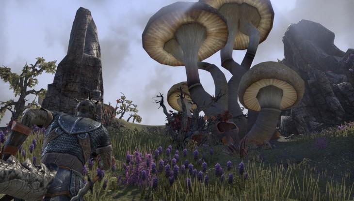 TESO-morrowding mushroom