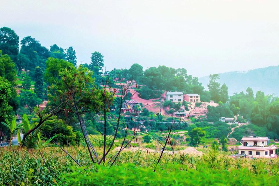 scenery02