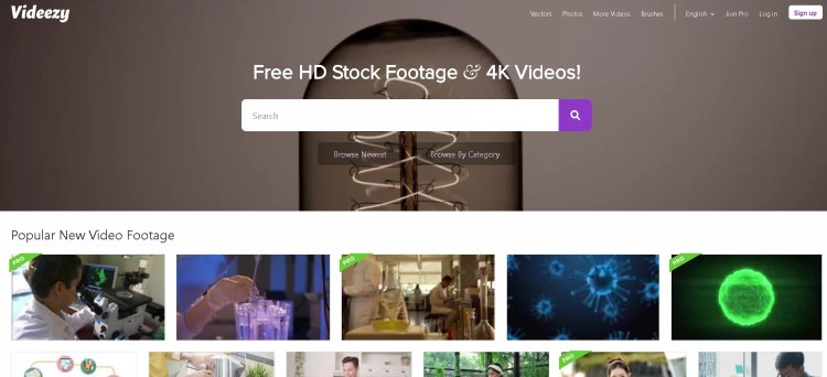 7 Best Royalty-Free Stock Video Websites to Download