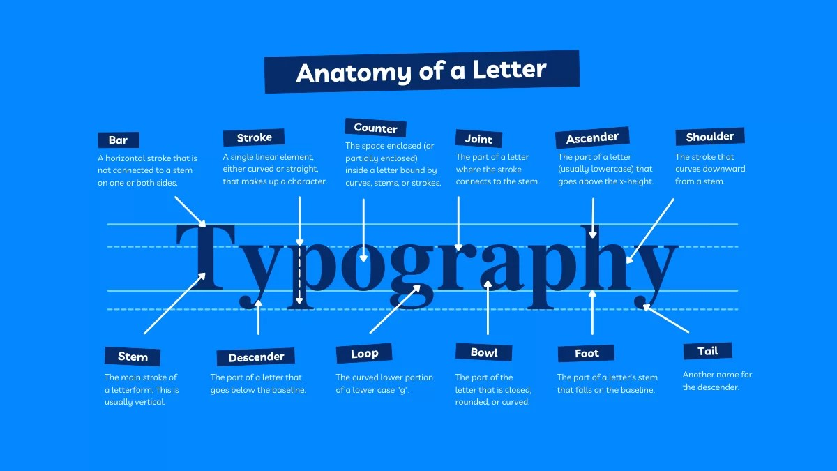 Typography vs Typeface: Which is Important?