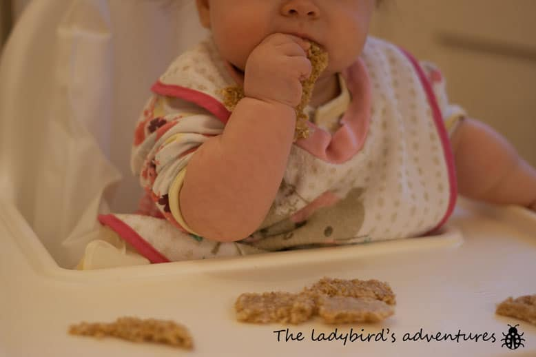 The reluctant baby led weaner