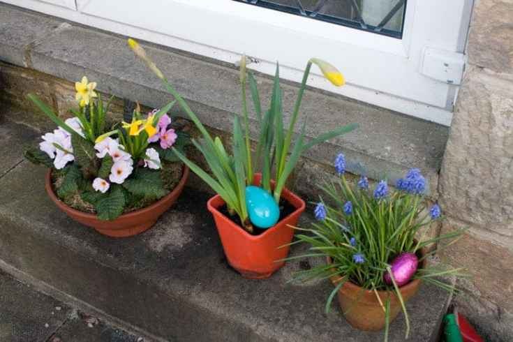 Easter egg hunt ideas