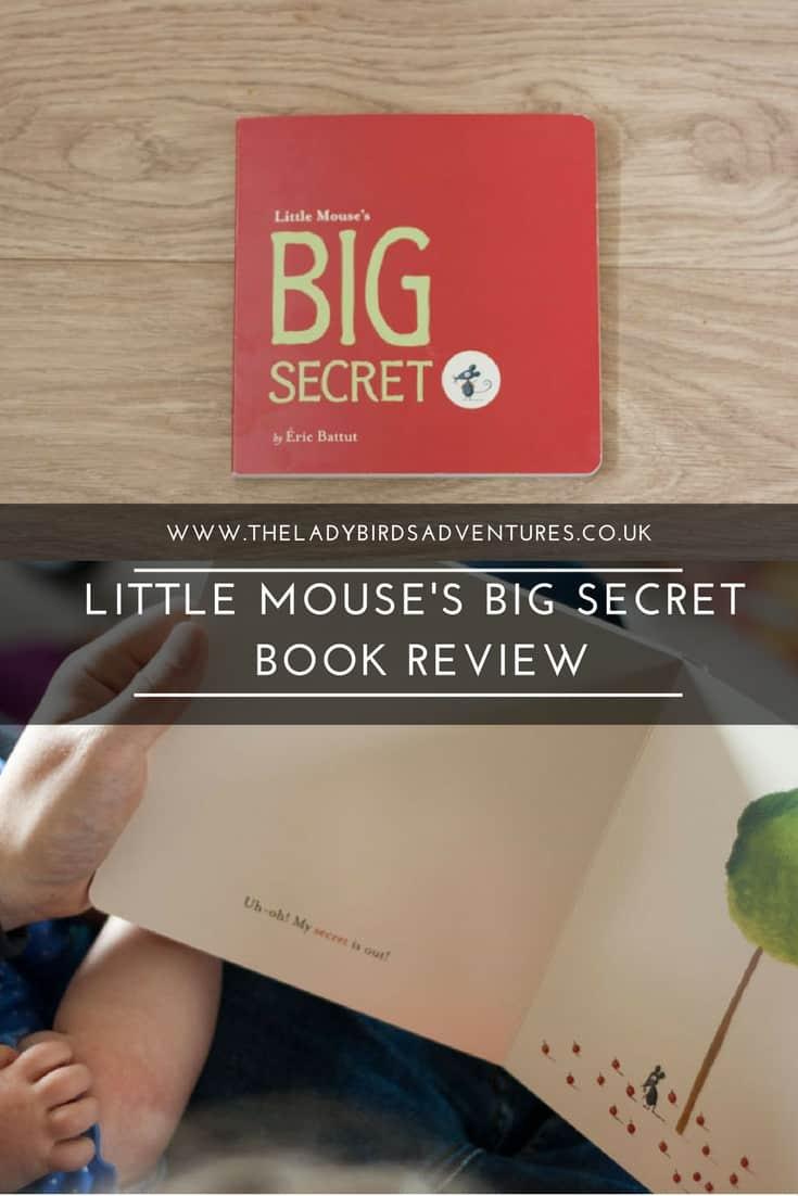Little Mouse's Big Secret Book Review