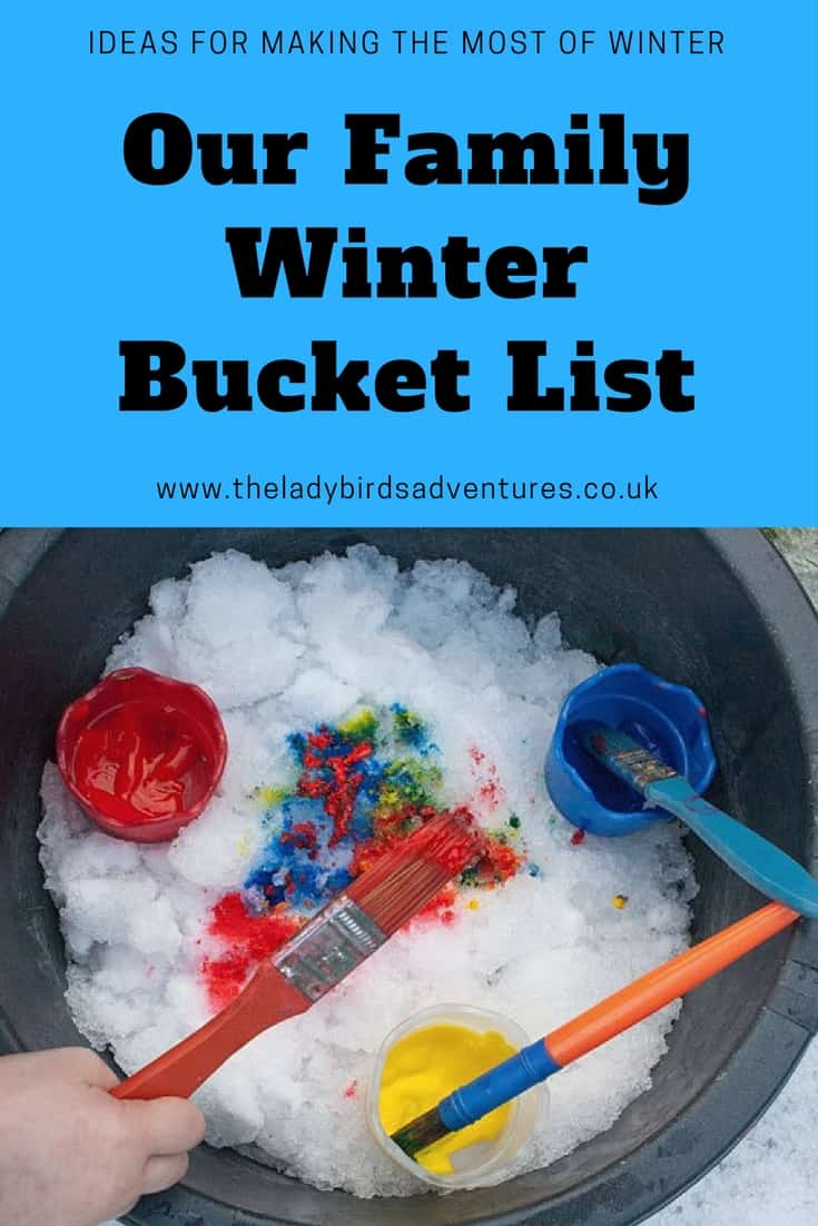 family winter bucket list