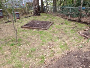 Gardening: Reusing Autumnal Hay As Grass Seed Blanket Update!