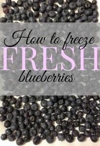 Freezing-Blueberries