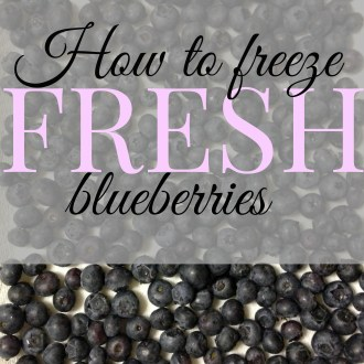 Making More Out Of Monday Meals: How To Freeze Fresh Blueberries!