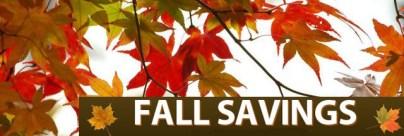 fall_savings_banner