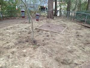 Gardening Update:  Autumn Display Hay Seed Blanket!