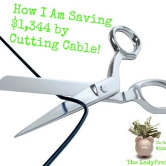 How I Am Saving $1,344 by Cutting Cable!
