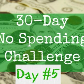 August No-Spend Month Challenge Day 5: Rain-Check Shopping Guide!