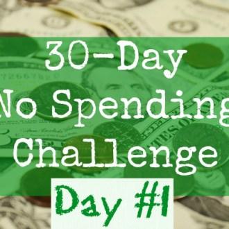 August No Spend Challenge Day 2: Kitchen & Pantry Organization