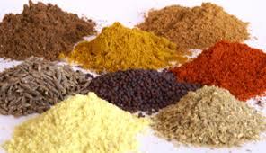 DIY Mild Curry Powder & Rub Recipe!