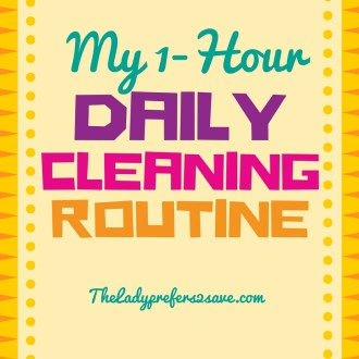 My 1-Hour Daily Cleaning Routine