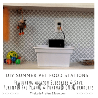 How to make DIY Summer Pet Food Stations