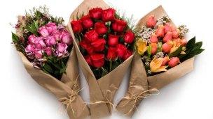 ht_flowers_dm_130212_wmain