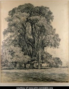 constable drawing trees-Working Methods of 19th Century European Landscape Painters-FSLP