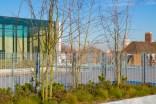 Uni of Greenwich Landscape Roof-134