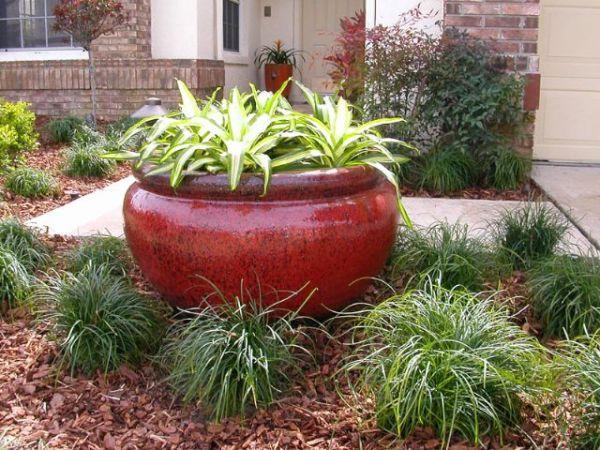 central florida plant and garden
