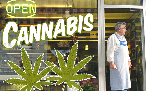 Marijuana-Shop-Sized