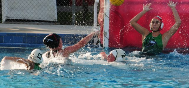 Varsity Water Polo: CCHS Plays Against South Broward and Cypress Bay