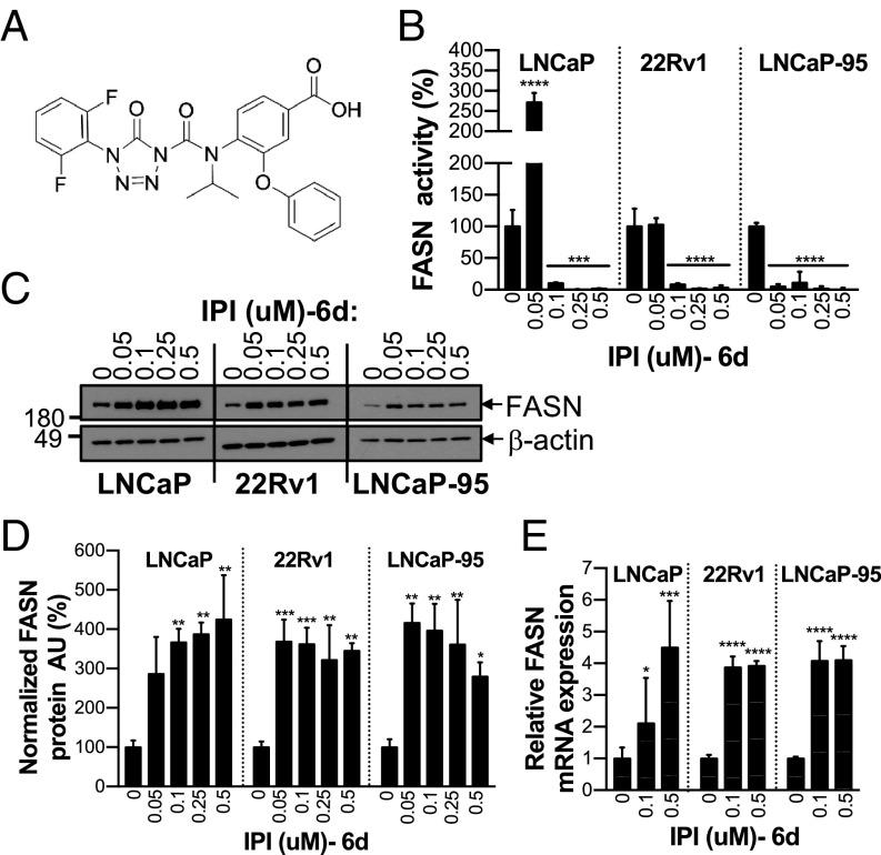 Inhibition of de novo lipogenesis targets androgen