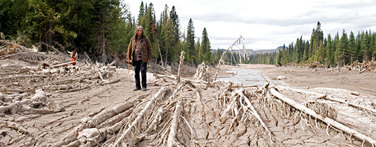 Effects of the Mount Polley mine disaster in 2014.   Photo by Jeremy Board