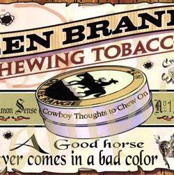 Cowboy Poster Horse Color