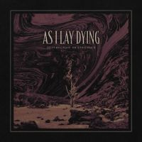 As I Lay Dying - Destruction or Strength (Single) (2020)