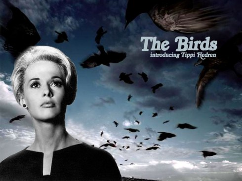 The-Birds-alfred-hitchcock-