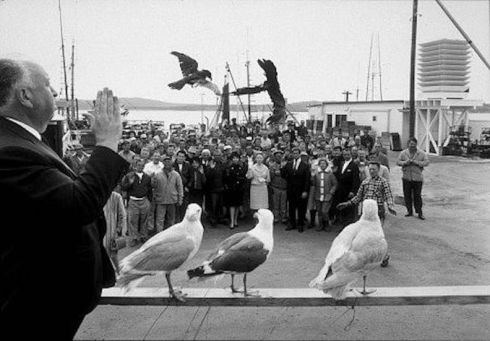 Hitch on the set of The Birds
