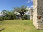 Stokes Hall 057