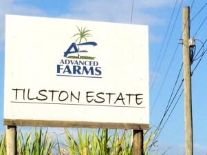 Tilston Estate-6