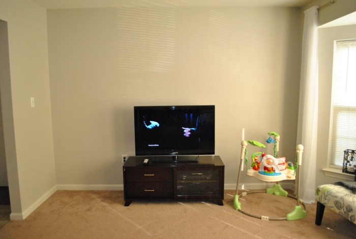 Get Rid of Excess and Organize Your Home The Living Room