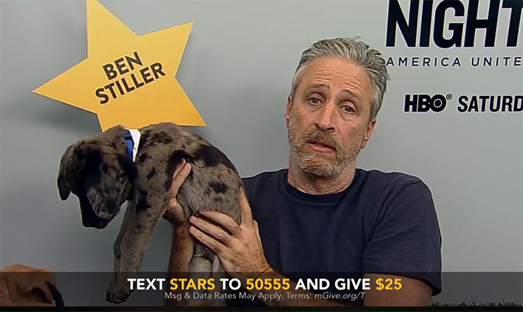 Watch Jon Stewart play with a bunch of puppies for charity
