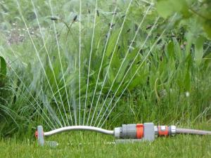 Lawn Sprinkler Watering