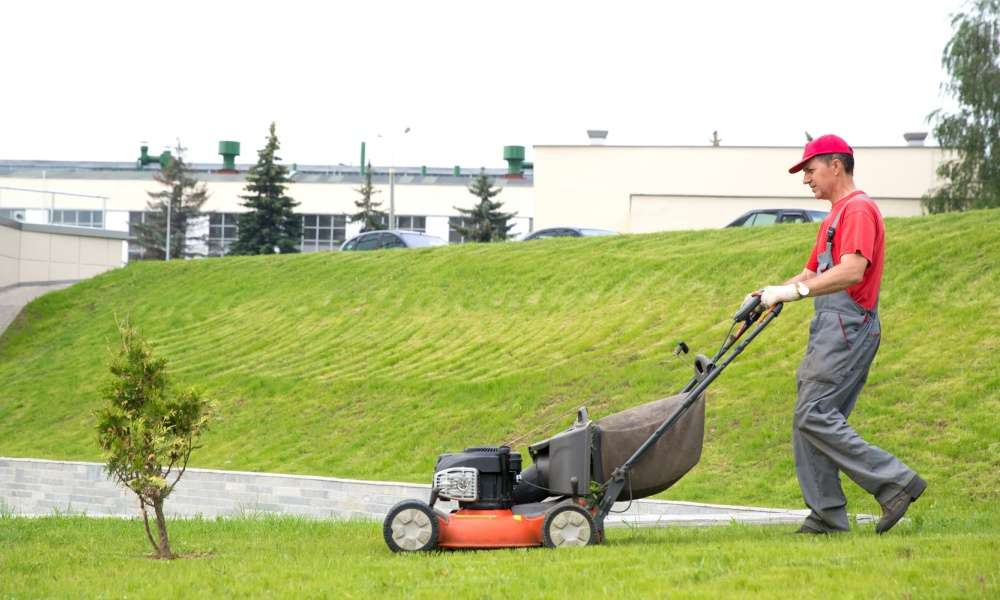 How to Run a Lawn Care Business - The Lawn Solutions
