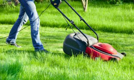 Corded Electric Lawn Mower Reviews for 2017