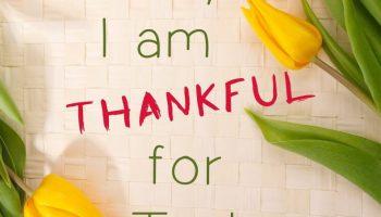thankful-1081614_1920.jpg?resize=350%2C200