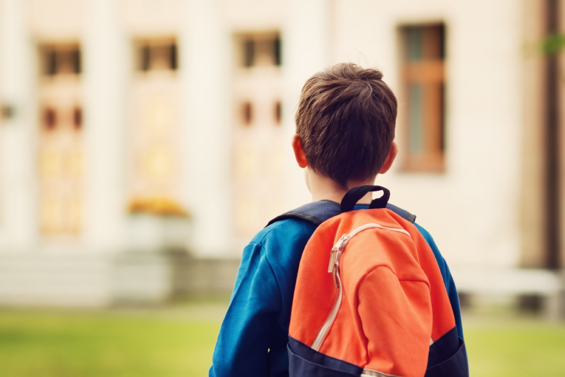 child custody joint legal physical children school change