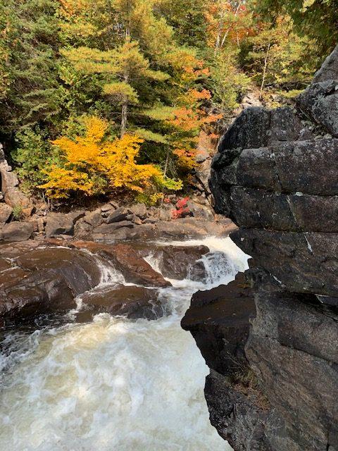 Oxtongue River/Ragged Falls