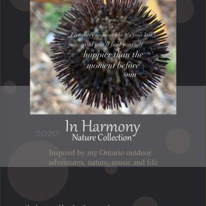 2020 In Harmony Nature Collection