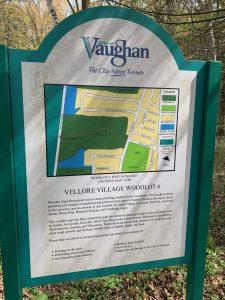 Vellore Village Woodlot 6