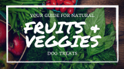 Dog Friendly Fruits and Vegetables Guide