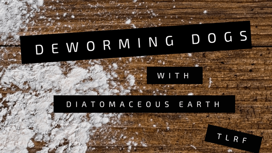 Diatomceous earth for dogs