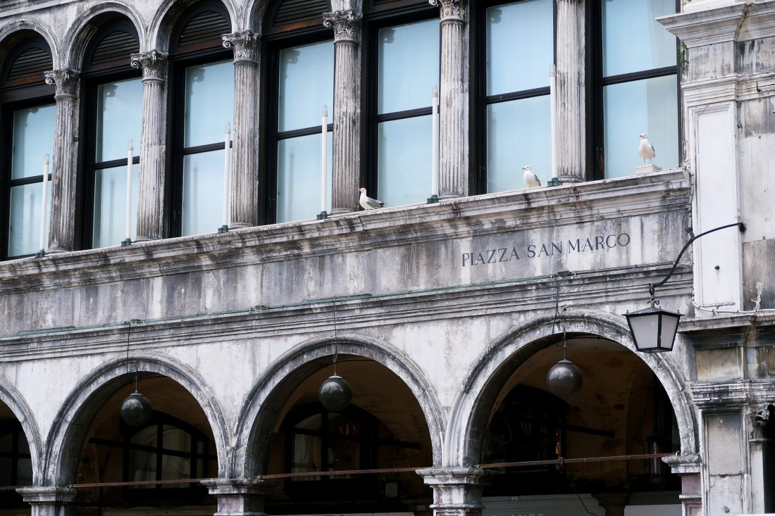 Piazza San Marco Venice - Things To Do In Venice Guide