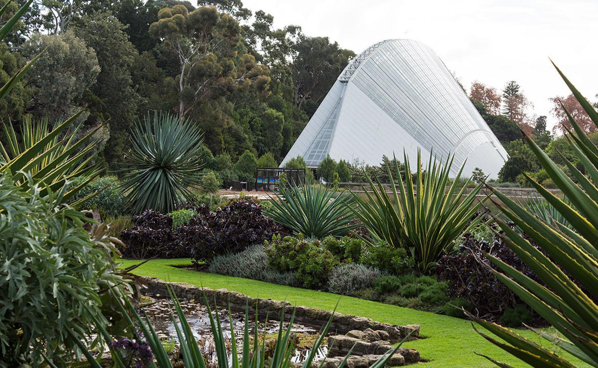 adelaide botanic garden in australia