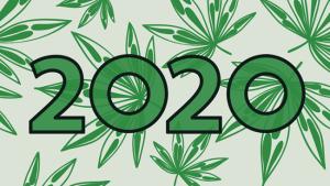 2020-marijuana-leaves