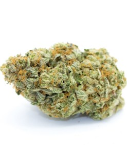 buy pineapple express strain