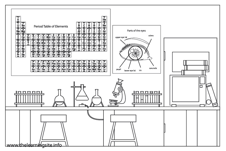 Parts of a science lab. The Lab Report. 2019-01-19